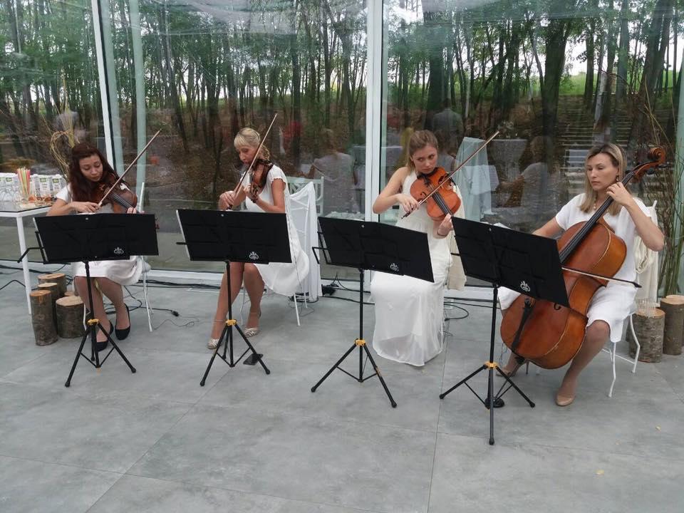 Gudački kvartet Wonder Strings Akacia dm gastro događaj