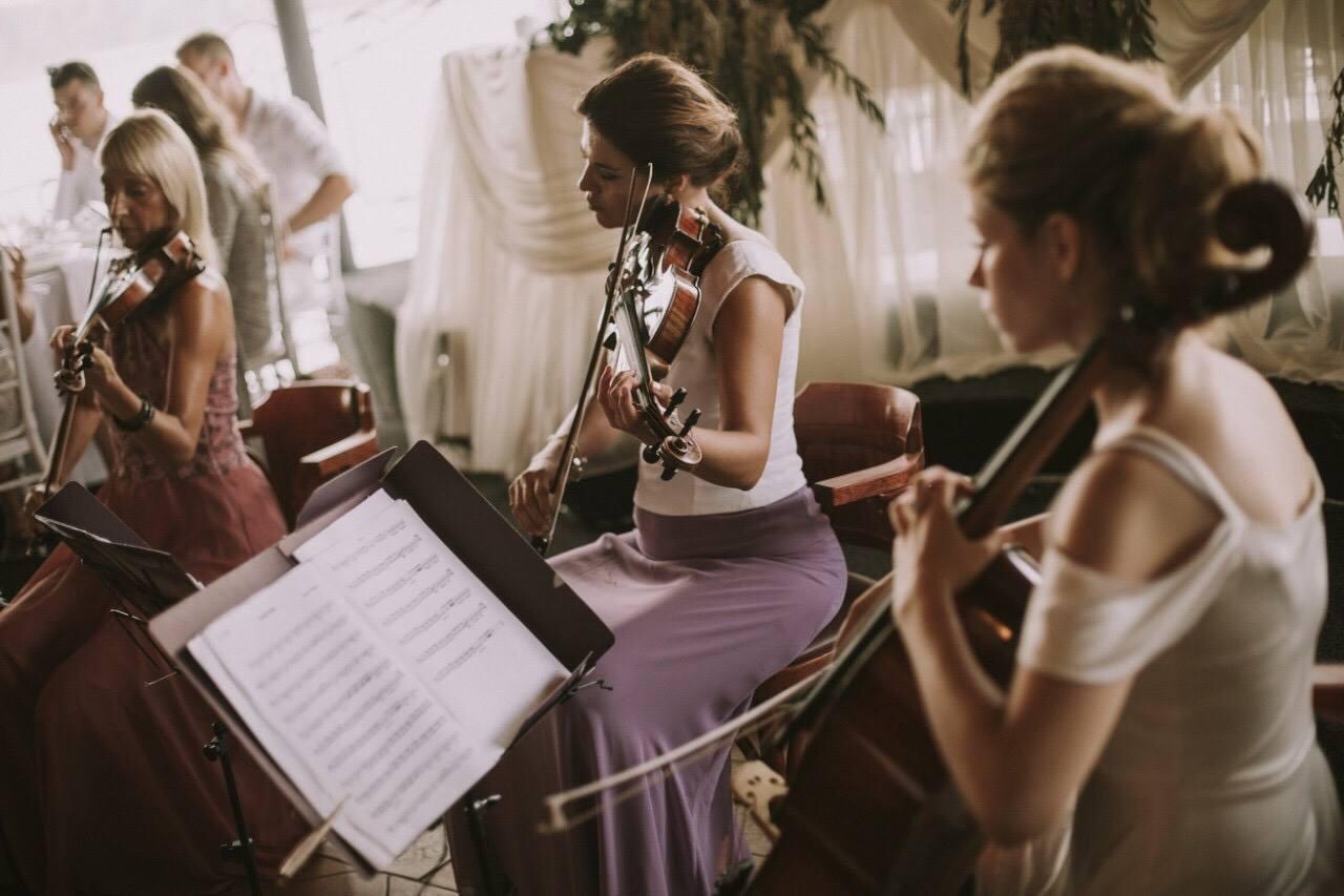 Tango latino Wonder Strings kvartet preporuke